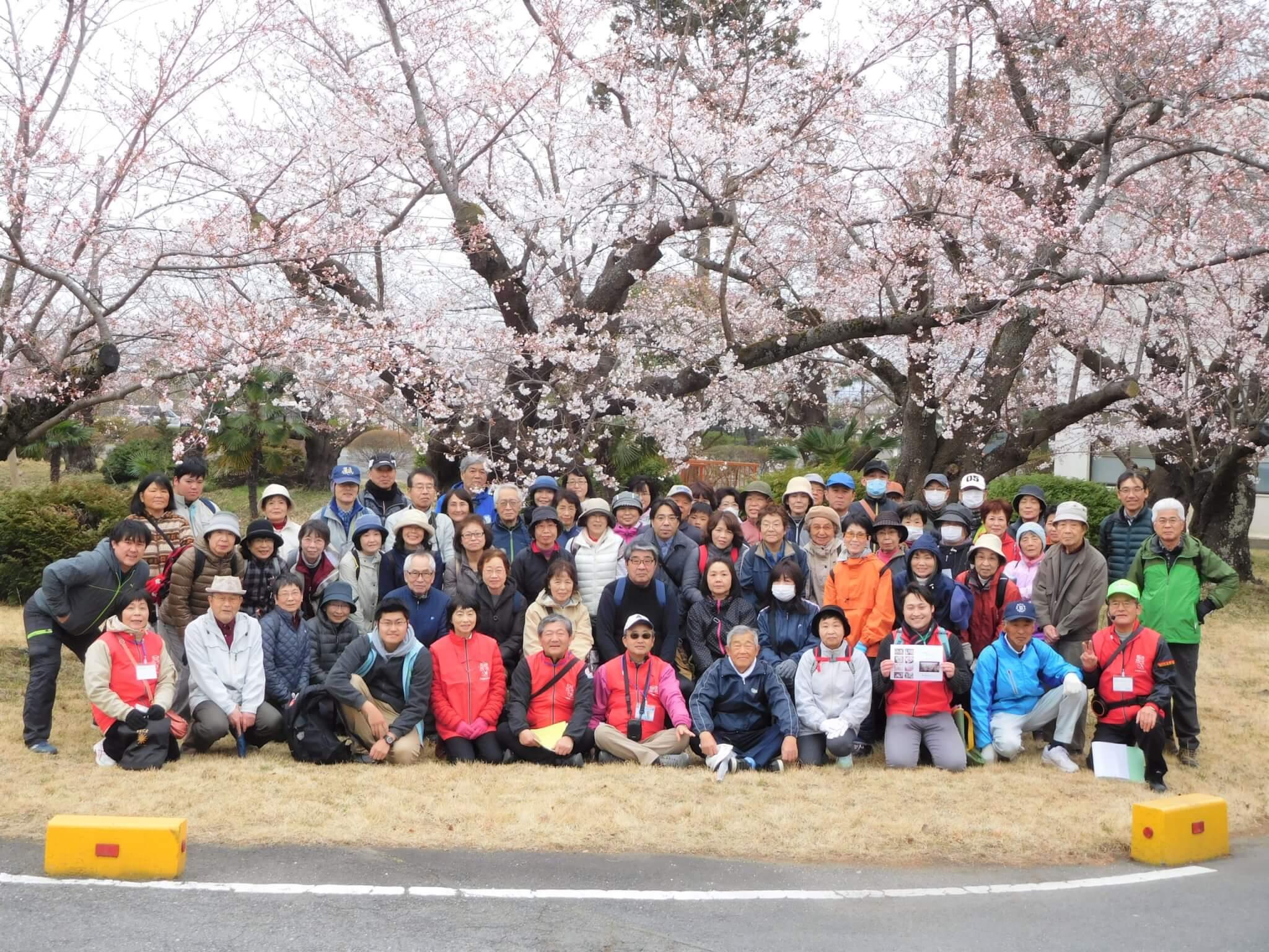 阿見桜ウォーキング 集合写真